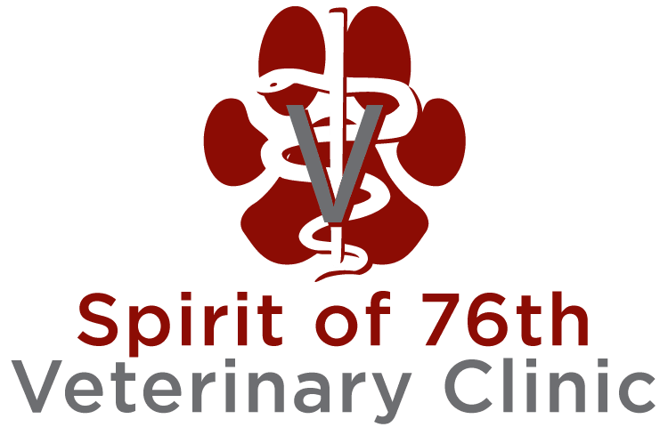 Spirit of 76th Veterinary Clinic